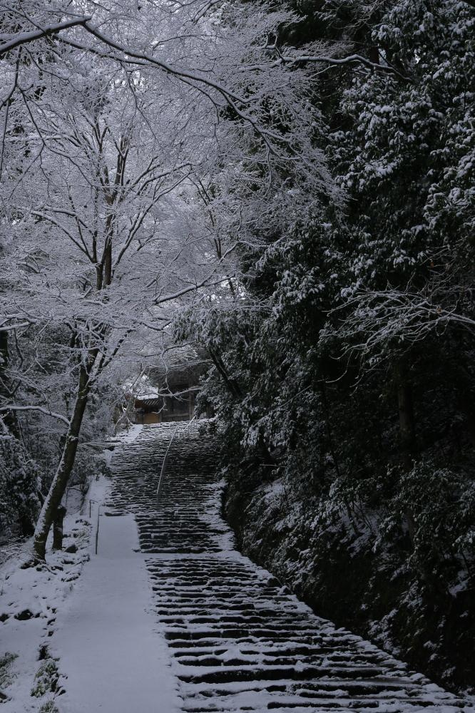 神護寺 雪景色 2016                                 _f0021869_21514976.jpg