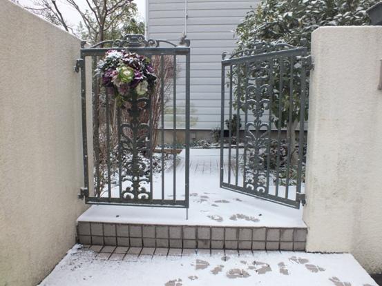 我が家の雪景色_b0214473_10511768.jpg