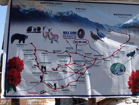 10日目 : Trekking day8 チョムロン→タダパニ_a0207588_20114539.jpg