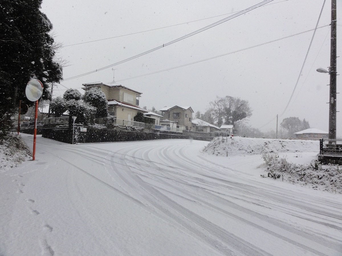 1月24日 大雪!!_e0174091_13010193.jpg