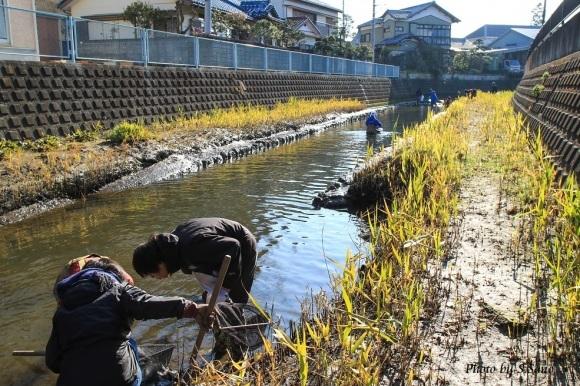 冬の侍従川掃除&調査(2016年1月)_b0348205_19353860.jpg