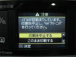 f0075207_246511.jpg
