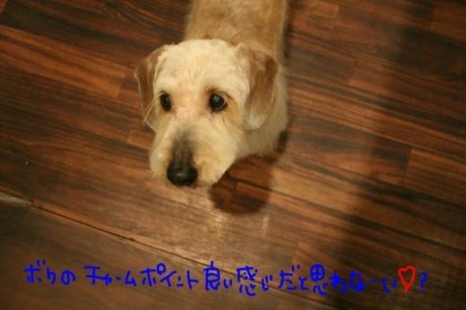 オフ♪_b0130018_12580321.jpg