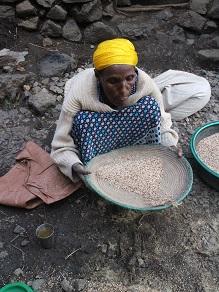 エチオピアの地ビールというか泥水?タッラに挑戦してみよう_c0030645_20245321.jpg