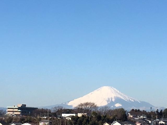 おはようございます 今朝はこの冬で恐らく一番気温が下がっていたと 思います_c0222448_12190645.jpg