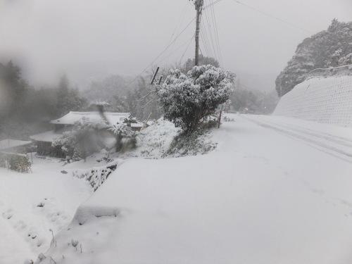 記録的大雪の昨日_d0336460_17060809.jpg