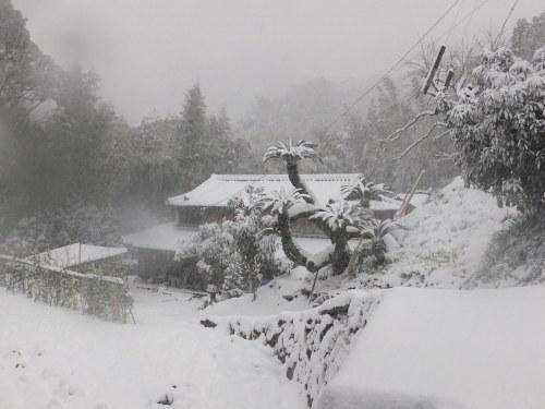 記録的大雪の昨日_d0336460_17093182.jpg