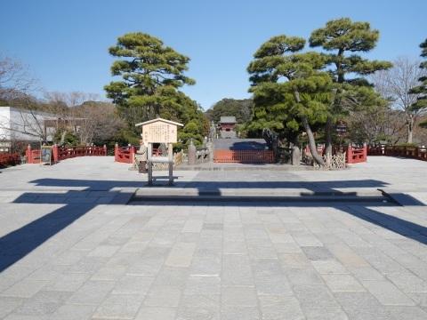 鶴岡八幡宮の梅_a0351368_19235944.jpg