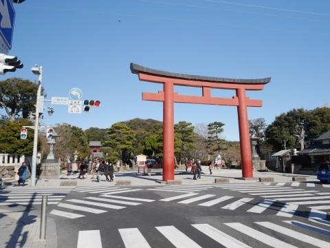鶴岡八幡宮の梅_a0351368_19252630.jpg