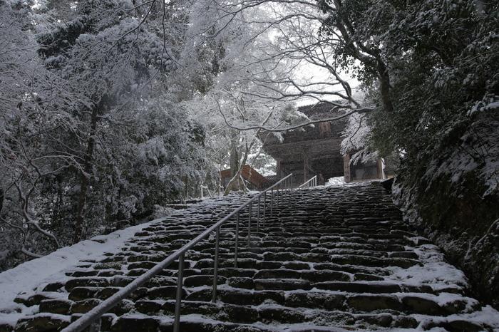神護寺 雪景色 2016                                 _f0021869_21241286.jpg