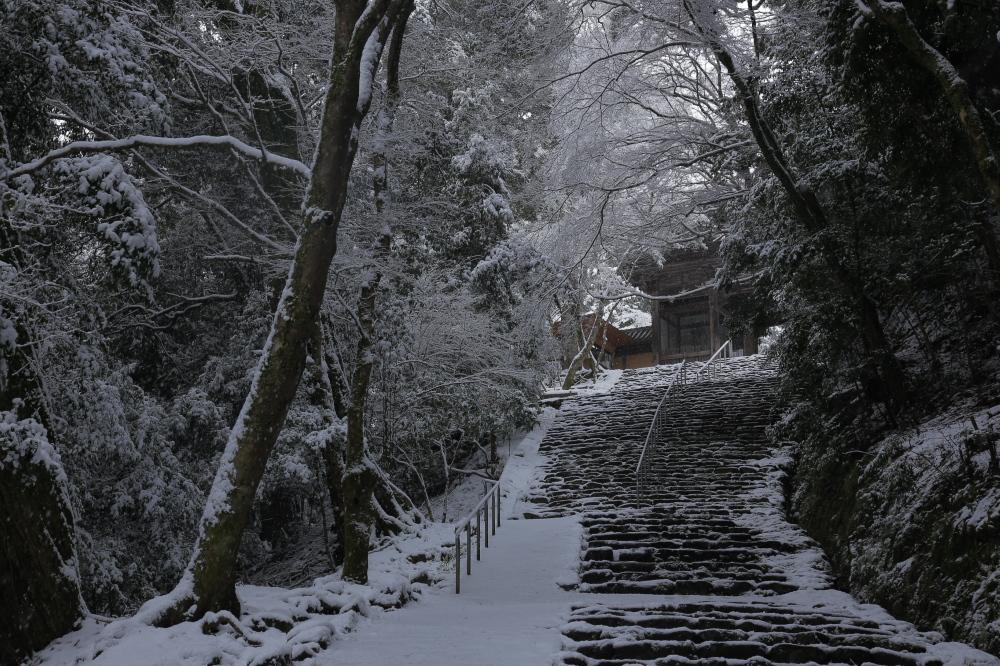 神護寺 雪景色 2016                                 _f0021869_21244915.jpg