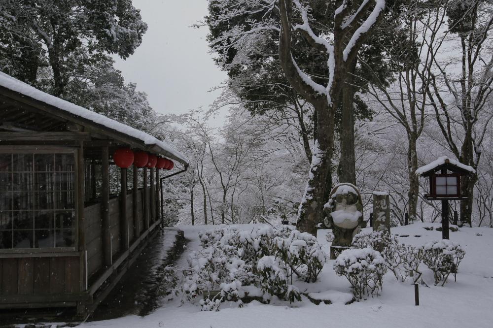 神護寺 雪景色 2016                                 _f0021869_21251322.jpg