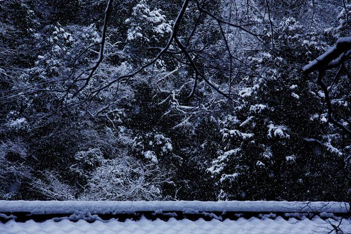神護寺 雪景色 2016                                 _f0021869_21265769.jpg