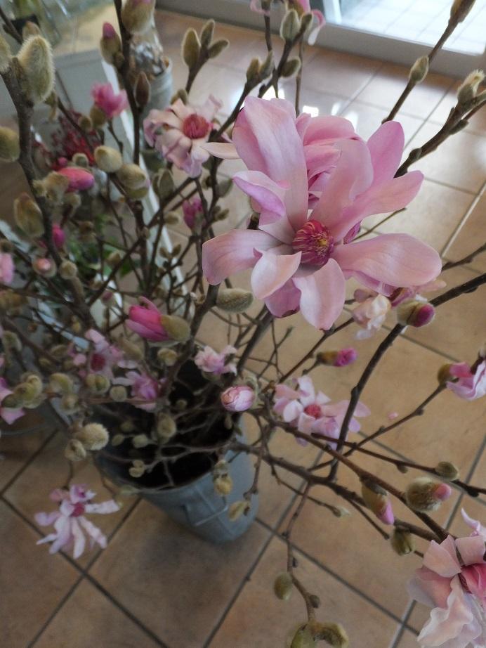 オークリーフ(春の花木)_f0049672_17323645.jpg