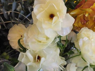 オークリーフ(春の花木)_f0049672_17432890.jpg