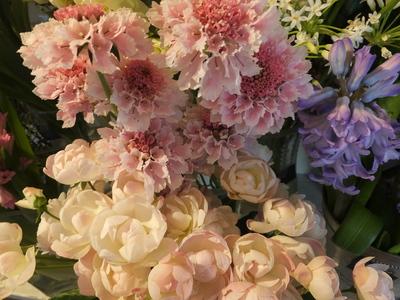 オークリーフ(春の花木)_f0049672_17434991.jpg