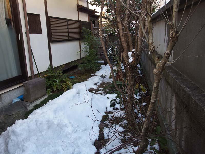 講習会 雪 断水_d0127876_21473893.jpg