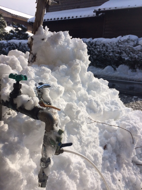 凍結ご注意!_f0170778_10231020.jpg