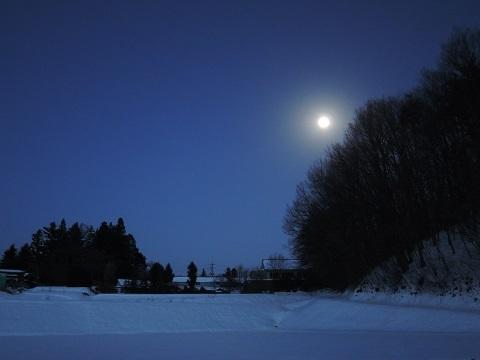 寒い日が続いております~(T_T)_a0211886_16491674.jpg