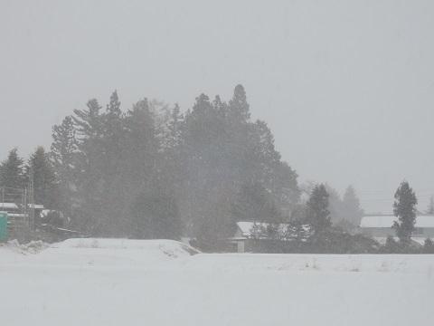 寒い日が続いております~(T_T)_a0211886_16534317.jpg
