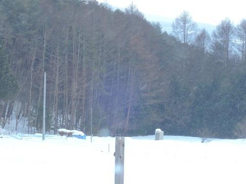 寒い日が続いております~(T_T)_a0211886_17145802.jpg