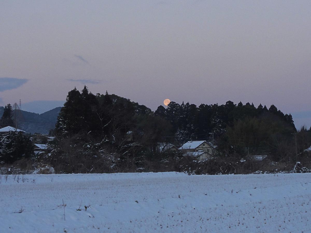 1月25日の太陽_e0174091_11525405.jpg
