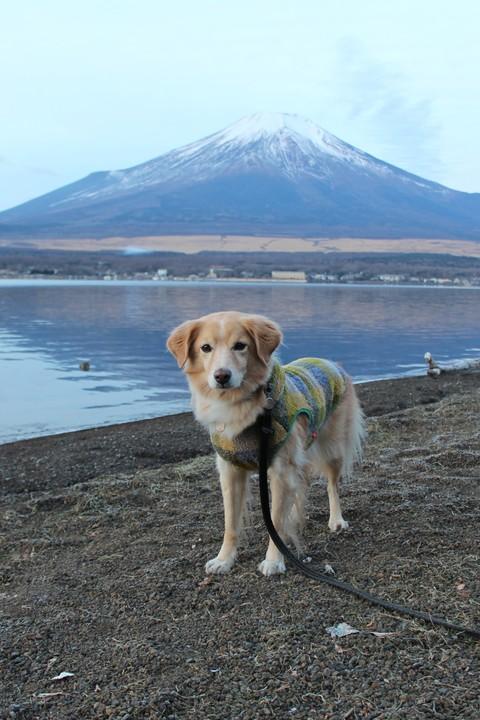 そうだ富士山を見に行こう!2016 後半_c0196992_22345572.jpg