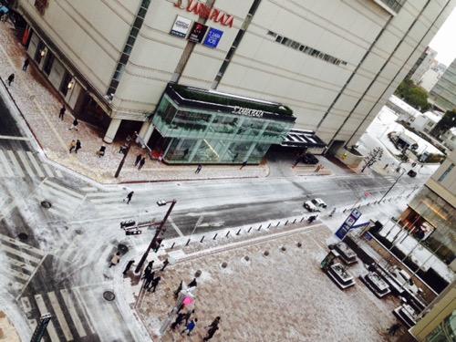 雪の日曜日_f0232994_12504214.jpg
