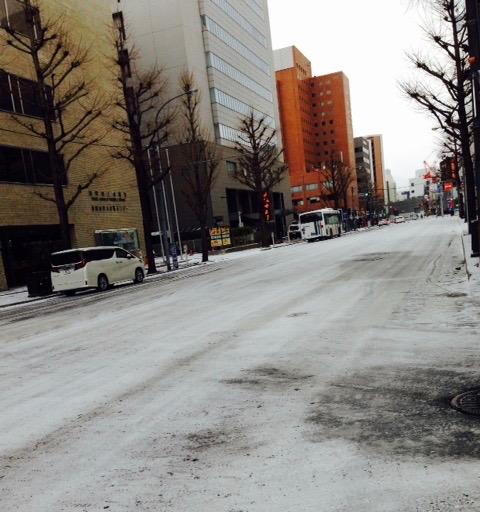 雪の日曜日_f0232994_12505339.jpg