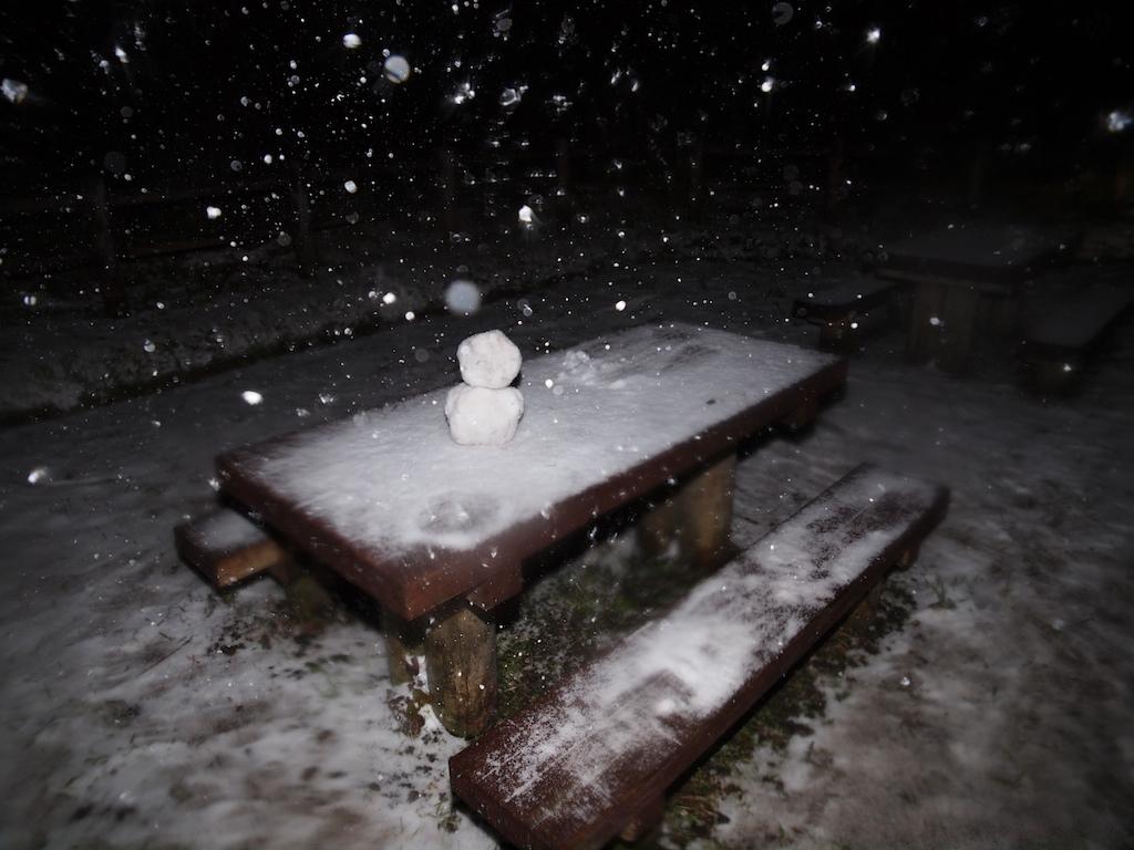 1/24 雪_a0010095_4313424.jpg
