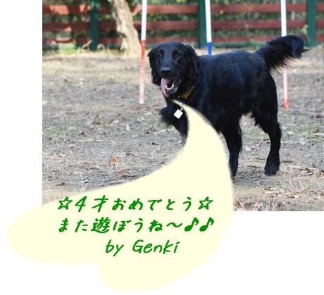 f0176499_01491106.jpg