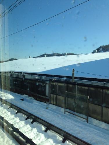 雪、雪です‼️_c0162404_15272464.jpg