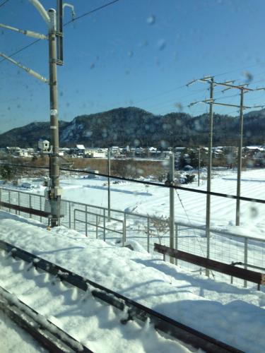 雪、雪です‼️_c0162404_15272485.jpg
