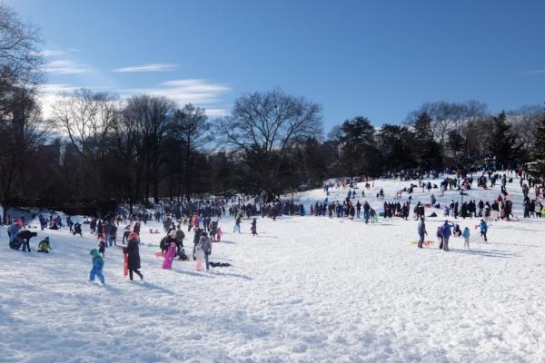 セントラルパークで雪ソリ遊びするならココ、Cedar Hill_b0007805_22264418.jpg