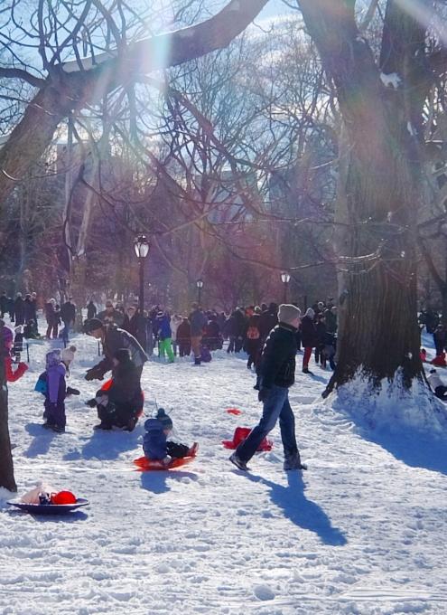 セントラルパークで雪ソリ遊びするならココ、Cedar Hill_b0007805_22271029.jpg