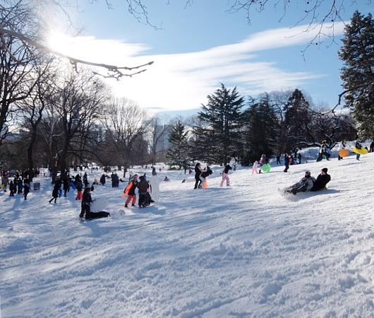 セントラルパークで雪ソリ遊びするならココ、Cedar Hill_b0007805_2227552.jpg