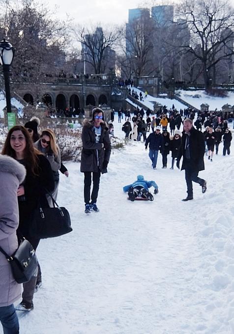 大雪翌日のNY、白銀のセントラルパークへ!!!_b0007805_555294.jpg