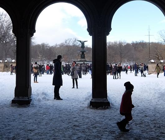 大雪翌日のNY、白銀のセントラルパークへ!!!_b0007805_5553085.jpg