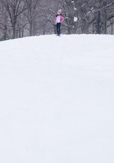 大雪翌日のNY、白銀のセントラルパークへ!!!_b0007805_5561859.jpg
