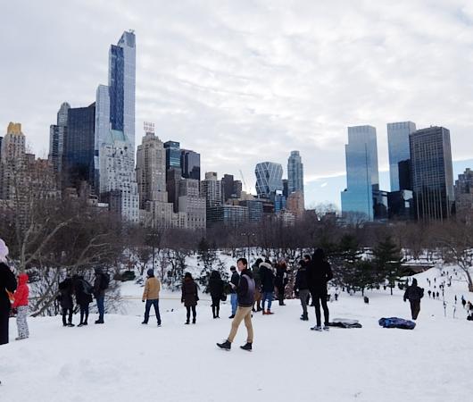 大雪翌日のNY、白銀のセントラルパークへ!!!_b0007805_556274.jpg