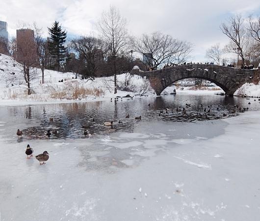 大雪翌日のNY、白銀のセントラルパークへ!!!_b0007805_5563772.jpg