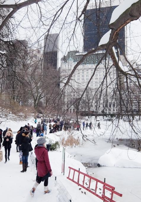 大雪翌日のNY、白銀のセントラルパークへ!!!_b0007805_5564944.jpg