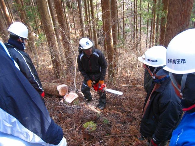 震災被災地の三陸沿岸地域で広がる自伐型林業_e0002820_11060621.jpg