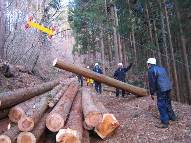 震災被災地の三陸沿岸地域で広がる自伐型林業_e0002820_11060625.jpg