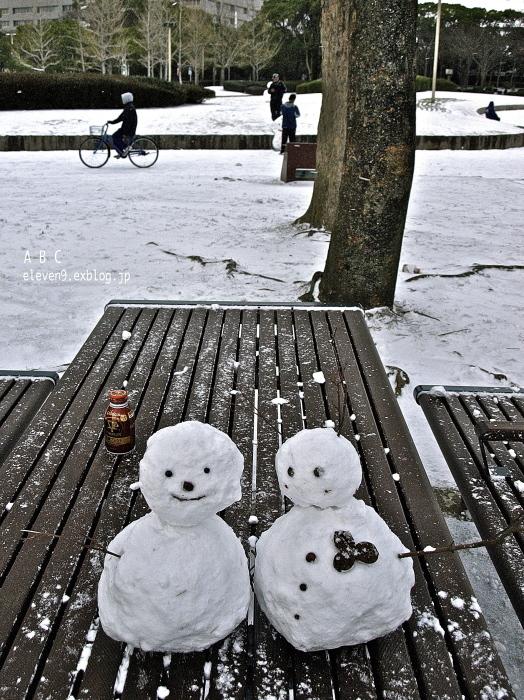 snow storm_f0315034_15112039.jpg