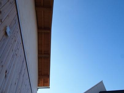 冬の青空_e0010955_22072986.jpg