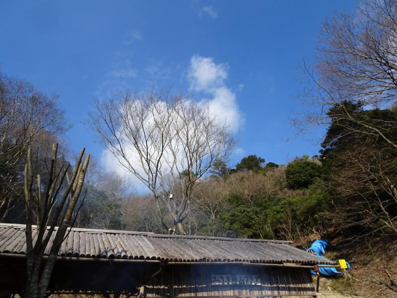 道普請もやってます in 孝子の森     by     (TATE-misaki)_c0108460_21304198.jpg