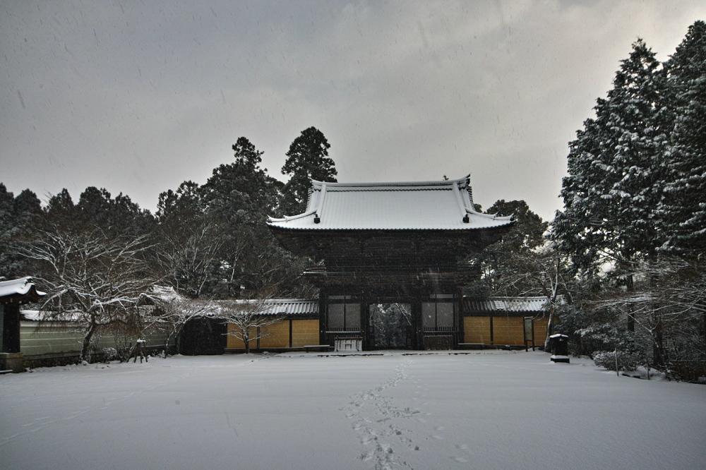 神護寺 雪景色 2016                                 _f0021869_18523732.jpg
