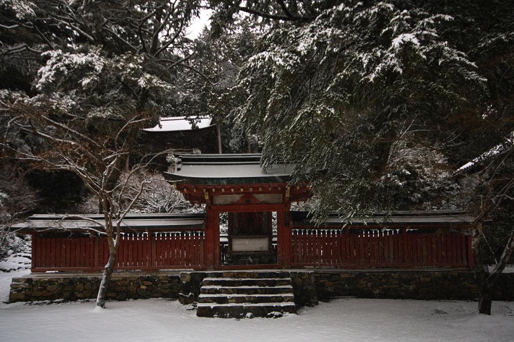神護寺 雪景色 2016                                 _f0021869_18524882.jpg