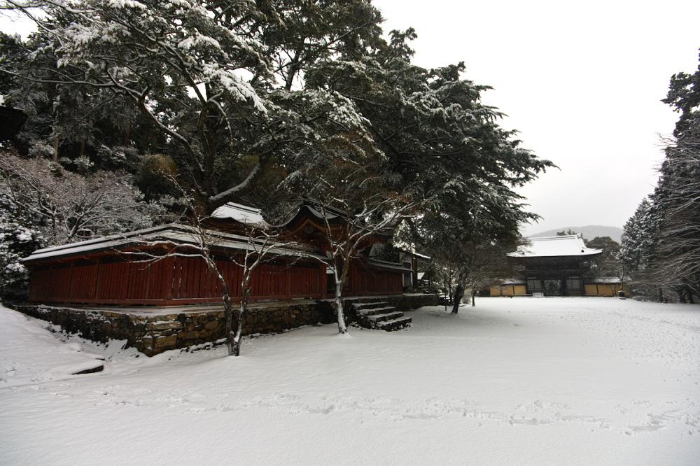 神護寺 雪景色 2016                                 _f0021869_18532667.jpg
